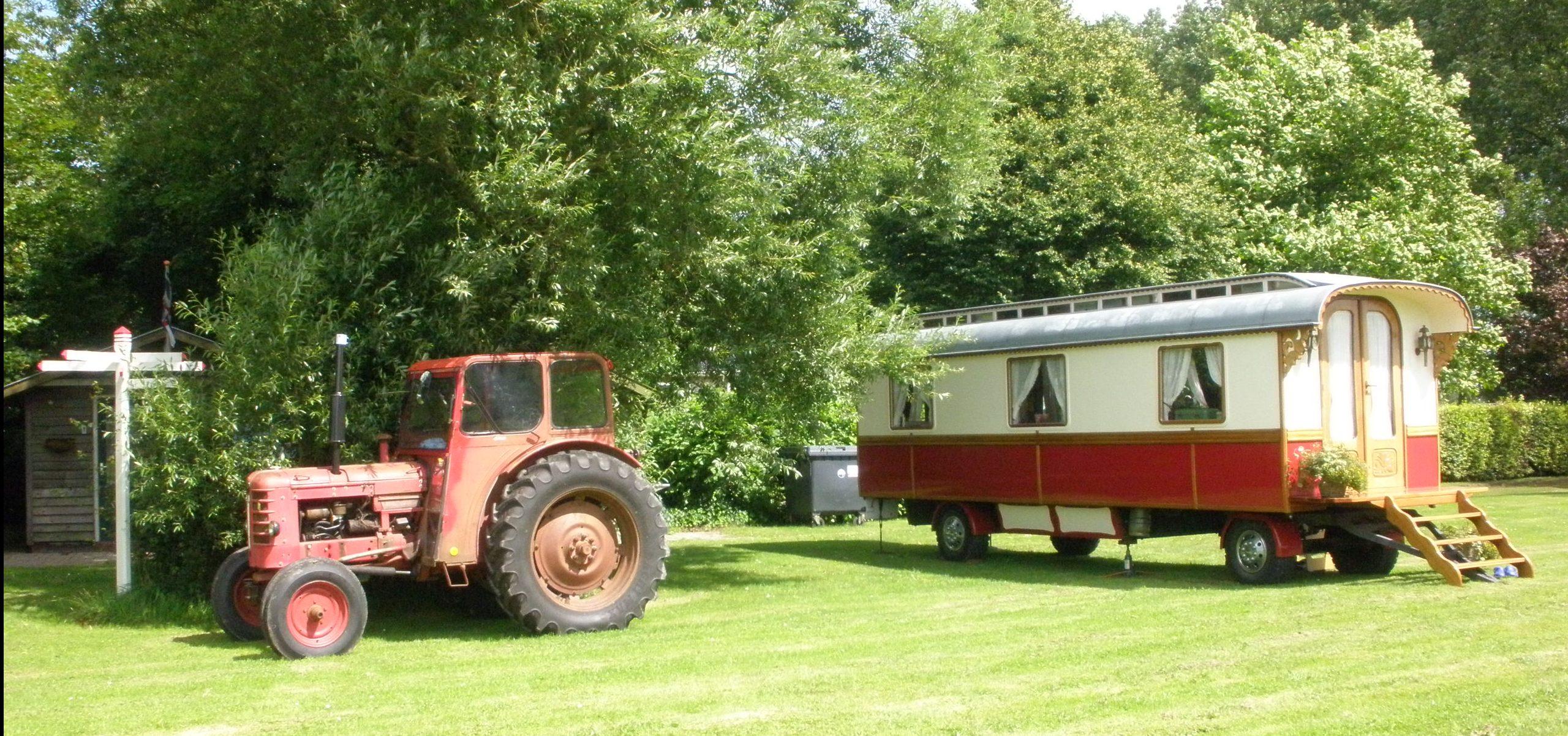 Minicampin De Roos
